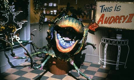 Audrey-II-in-Little-Shop--007
